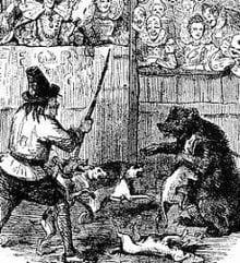 Bear baiting at Shakespeare's Globe Theatre