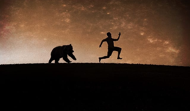 exit pursued by a bear stage direction
