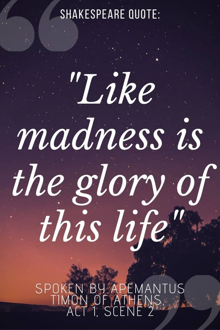 """timon of athens quote on sunset background - """"like madness is the glory of this life"""""""