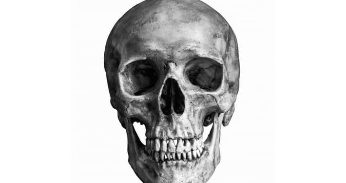 Hamlet skull scene